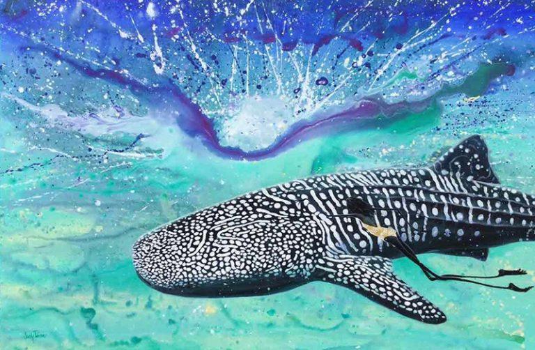 Judy Prosser Whale Shark Girl Print